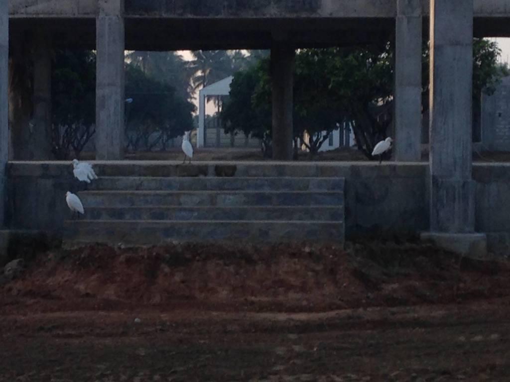 06-12-2014 – Dettaglio del tempio